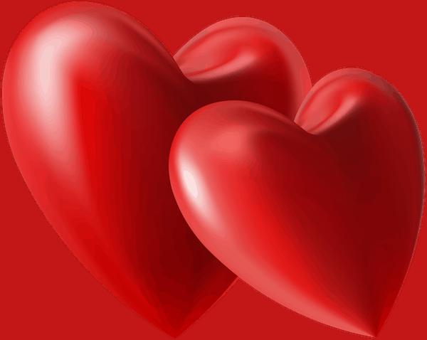 Sentiment amoureux L'expert en relation amoureuse